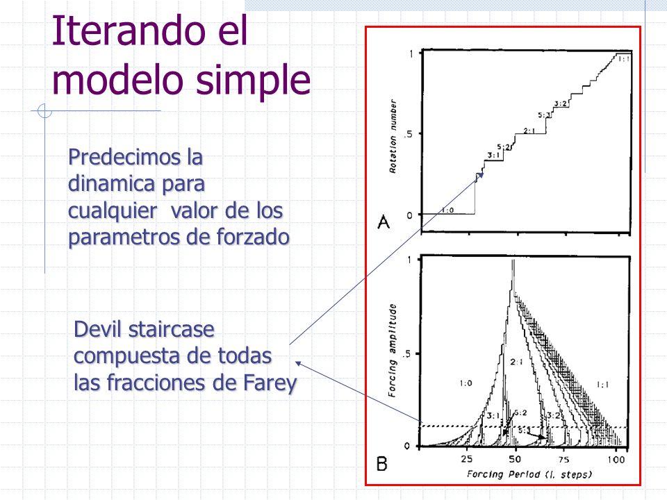 Iterando el modelo simple Predecimos la dinamica para cualquier valor de los parametros de forzado Devil staircase compuesta de todas las fracciones de Farey