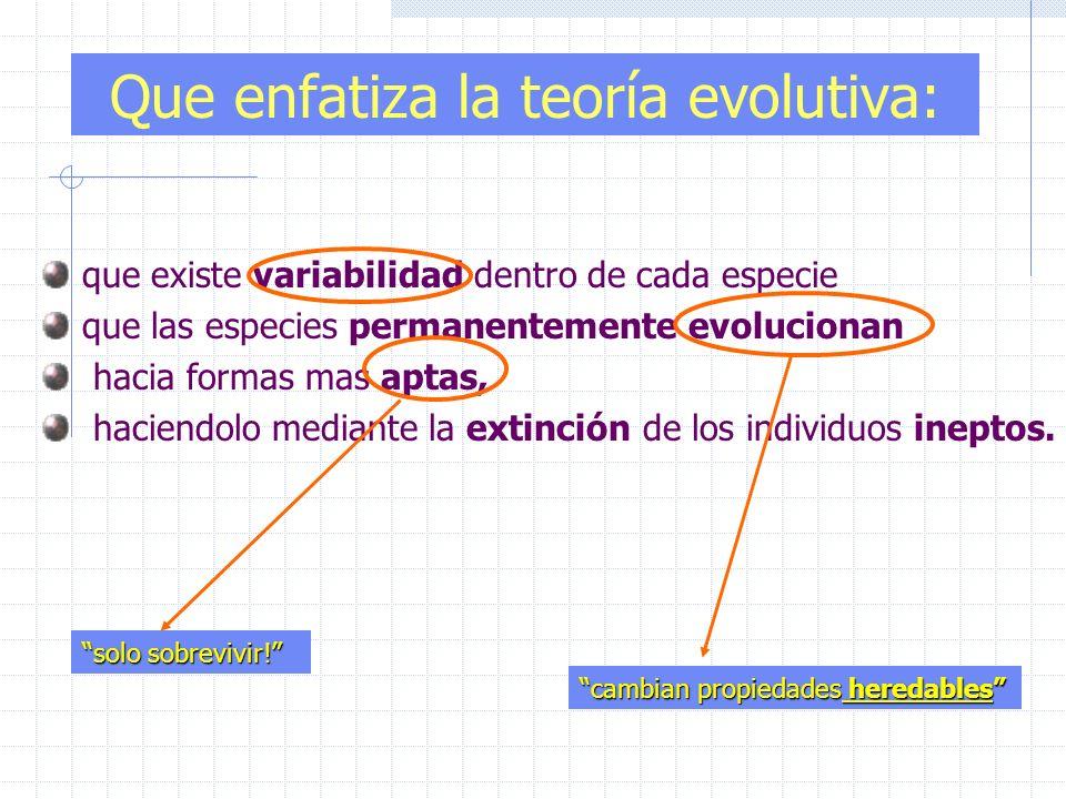 Que enfatiza la teoría evolutiva: que existe variabilidad dentro de cada especie que las especies permanentemente evolucionan hacia formas mas aptas,