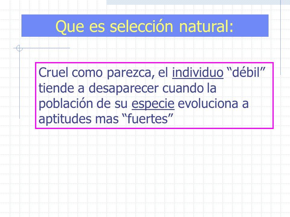 Cruel como parezca, el individuo débil tiende a desaparecer cuando la población de su especie evoluciona a aptitudes mas fuertes Que es selección natu