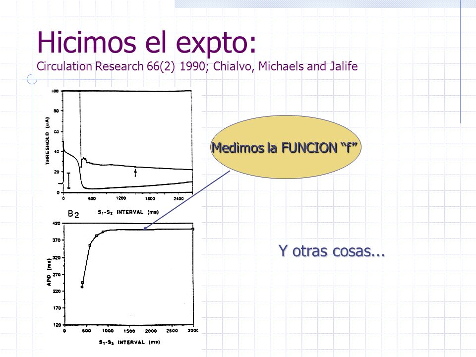Hicimos el expto: Circulation Research 66(2) 1990; Chialvo, Michaels and Jalife Medimos la FUNCION f Y otras cosas...