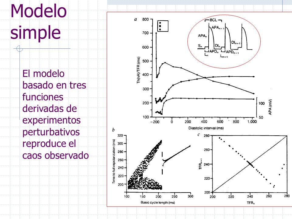 Modelo simple El modelo basado en tres funciones derivadas de experimentos perturbativos reproduce el caos observado