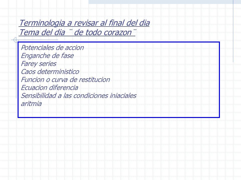 Caos deterministico 1.Generado por sistemas de ecuaciones muy simples 2.