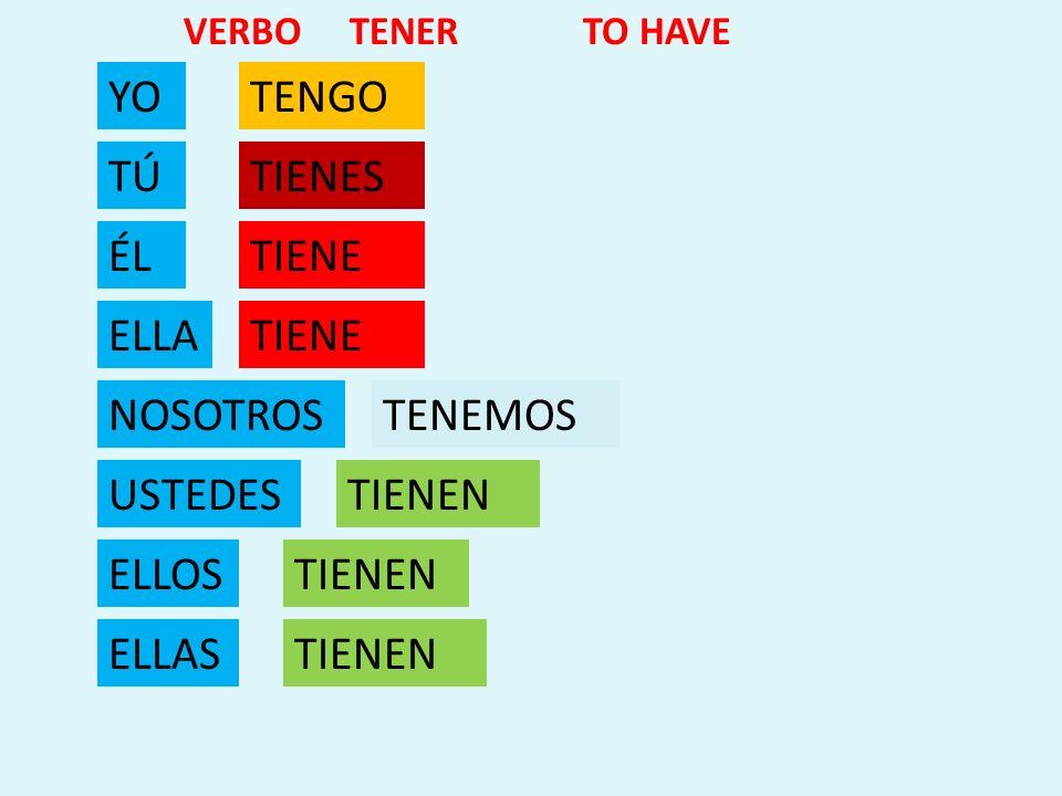 YO TÚ ÉL ELLA NOSOTROS USTEDES ELLOS ELLAS TENGO TIENES TIENE TENEMOS TIENEN VERBO TENER TO HAVE