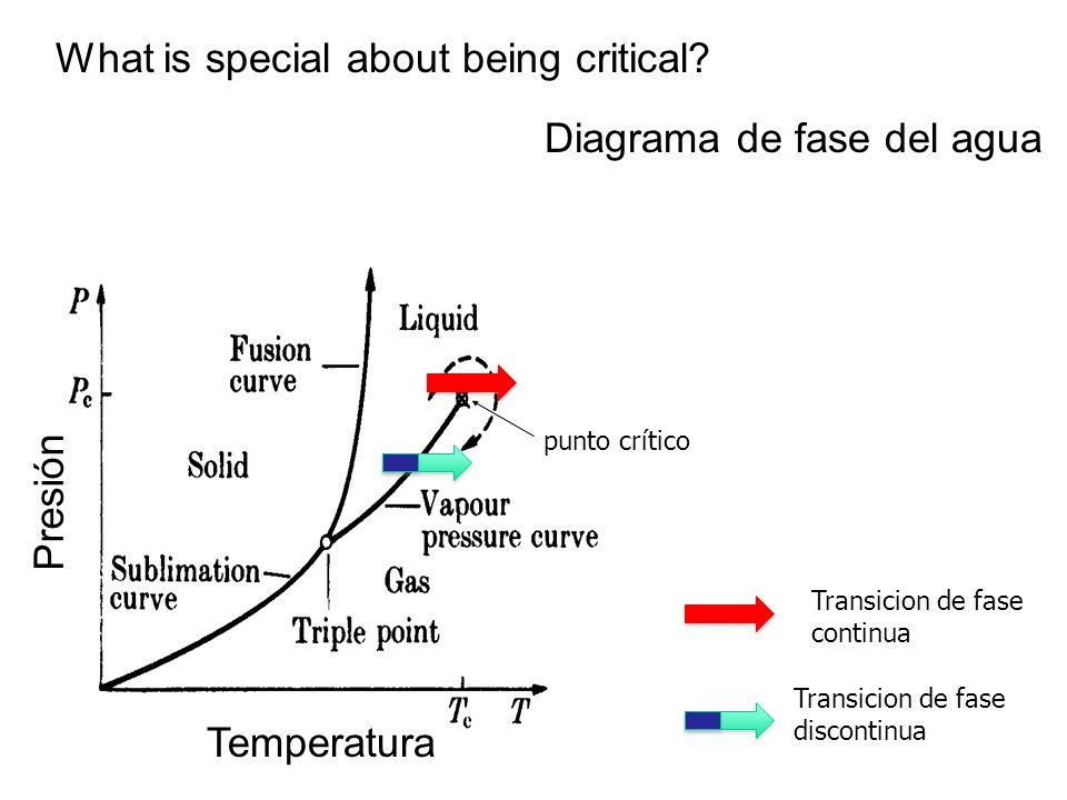 What is special about being critical? Diagrama de fase del agua punto crítico Temperatura Presión Transicion de fase discontinua Transicion de fase co