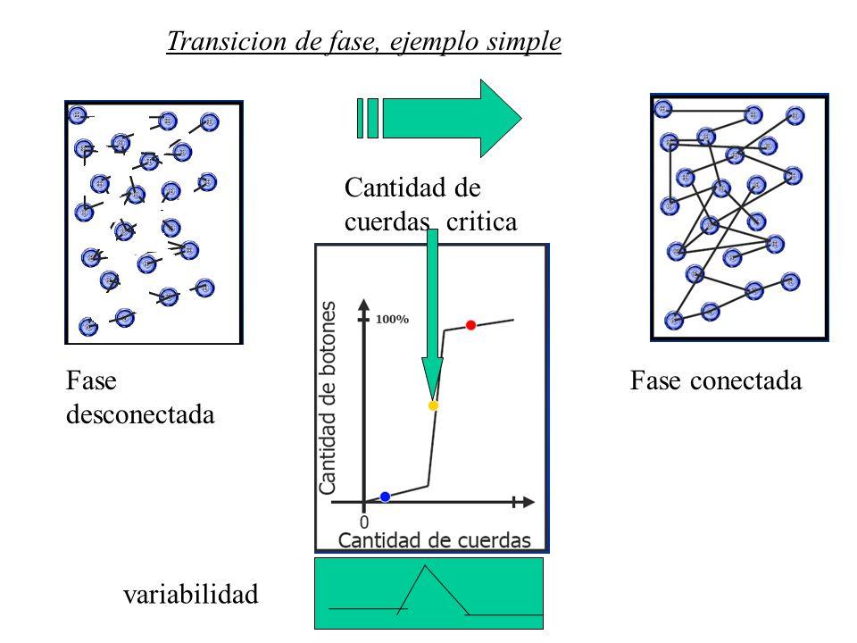 Transicion de fase, ejemplo simple Fase desconectada Fase conectada Cantidad de cuerdas critica variabilidad
