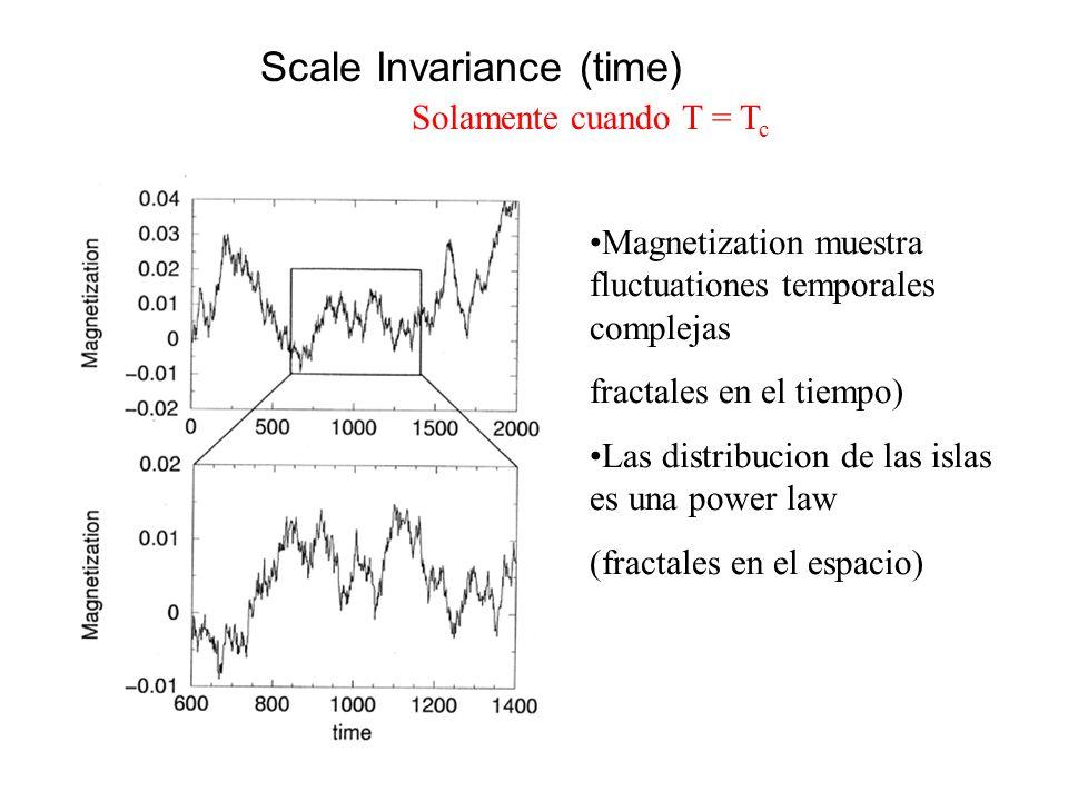Scale Invariance (time) Magnetization muestra fluctuationes temporales complejas fractales en el tiempo) Las distribucion de las islas es una power la