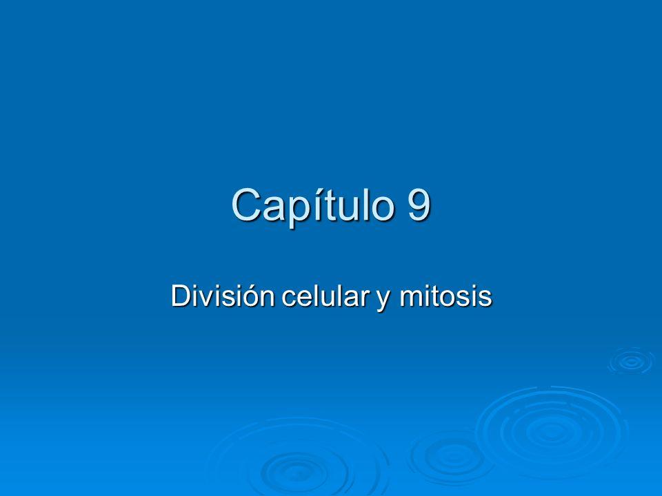 Capítulo 9 División celular y mitosis