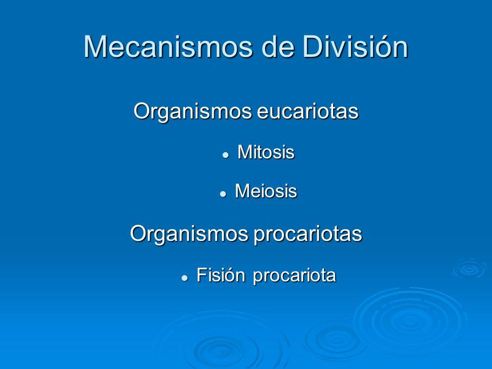 Mecanismos de División Organismos eucariotas Mitosis Mitosis Meiosis Meiosis Organismos procariotas Fisión procariota Fisión procariota
