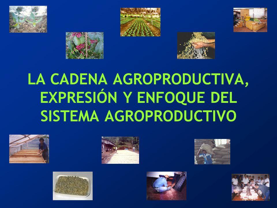 LA CADENA AGROPRODUCTIVA, EXPRESIÓN Y ENFOQUE DEL SISTEMA AGROPRODUCTIVO