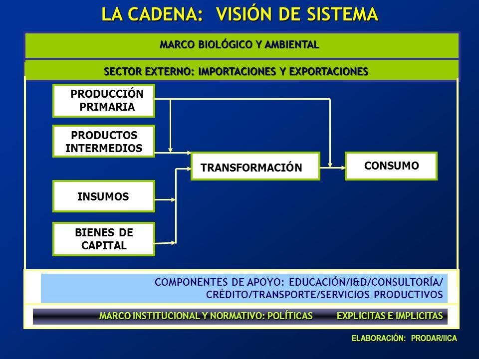 COMPONENTES DE APOYO: EDUCACIÓN/I&D/CONSULTORÍA/ CRÉDITO/TRANSPORTE/SERVICIOS PRODUCTIVOS MARCO INSTITUCIONAL Y NORMATIVO: POLÍTICAS EXPLICITAS E IMPL