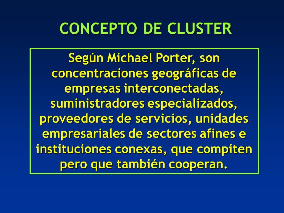 Según Michael Porter, son concentraciones geográficas de empresas interconectadas, suministradores especializados, proveedores de servicios, unidades empresariales de sectores afines e instituciones conexas, que compiten pero que también cooperan.