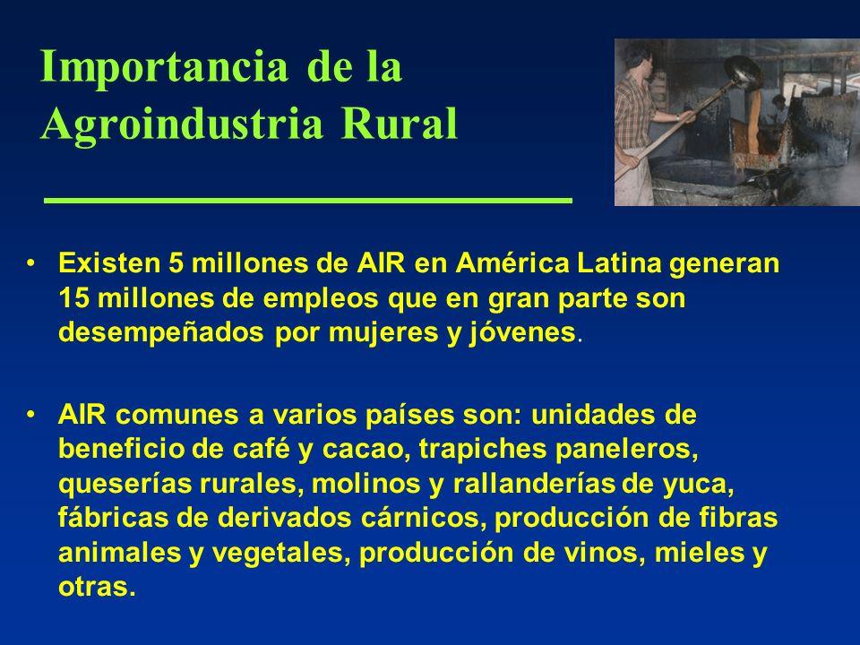 Existen 5 millones de AIR en América Latina generan 15 millones de empleos que en gran parte son desempeñados por mujeres y jóvenes.