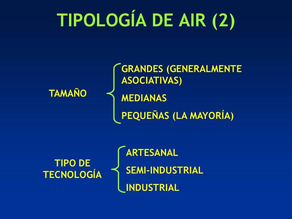 TIPOLOGÍA DE AIR (2) TAMAÑO GRANDES (GENERALMENTE ASOCIATIVAS) MEDIANAS PEQUEÑAS (LA MAYORÍA) TIPO DE TECNOLOGÍA ARTESANAL SEMI-INDUSTRIAL INDUSTRIAL