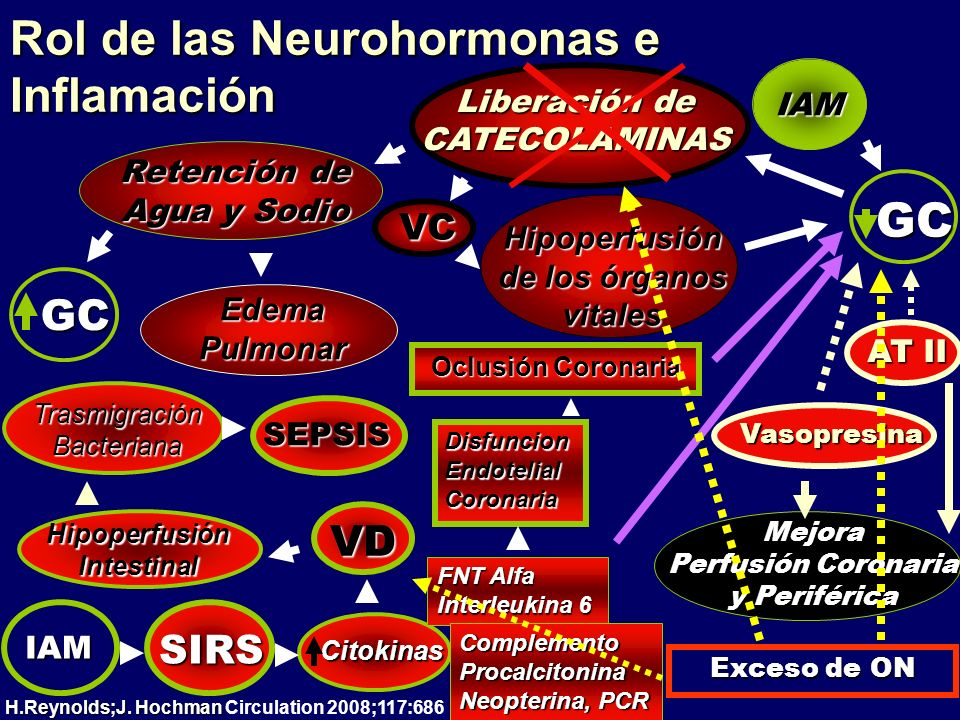 Rol de las Neurohormonas e Inflamación Liberación de CATECOLAMINAS Hipoperfusión de los órganos vitales Mejora Perfusión Coronaria y Periférica GC AT