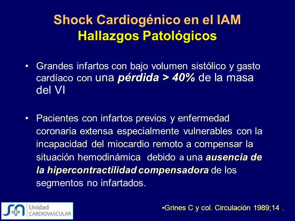 Shock Cardiogénico en el IAM Hallazgos Patológicos pérdida > 40%Grandes infartos con bajo volumen sistólico y gasto cardíaco con una pérdida > 40% de