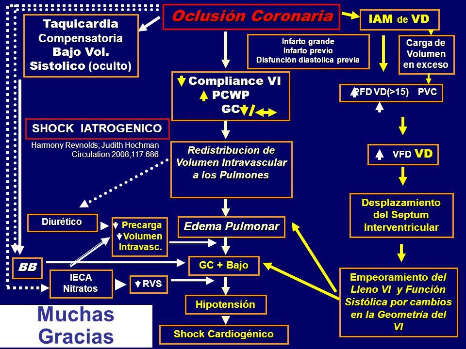 Oclusión Coronaria Taquicardia Compensatoria Bajo Vol. Sistolico (oculto) BB IECA Nitratos Diurético Compliance VI PCWP GC Compliance VI PCWP GC Redis