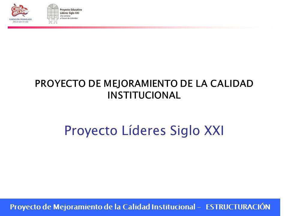 Proyecto de Mejoramiento de la Calidad Institucional - ESTRUCTURACIÓN PROYECTO DE MEJORAMIENTO DE LA CALIDAD INSTITUCIONAL Proyecto Líderes Siglo XXI