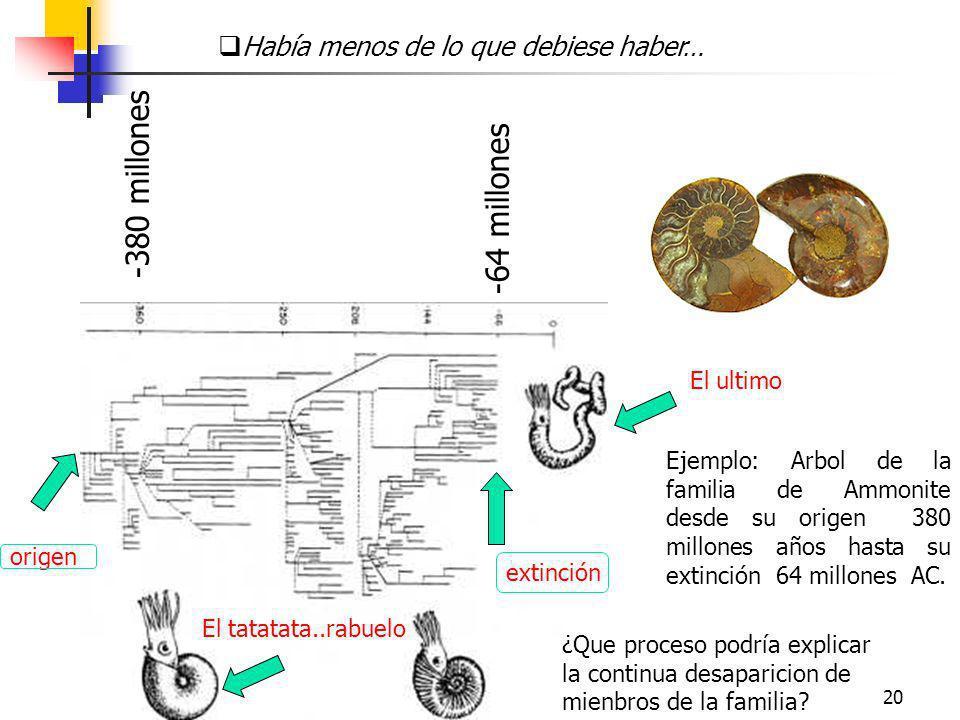 20 -380 millones -64 millones Había menos de lo que debiese haber… Ejemplo: Arbol de la familia de Ammonite desde su origen 380 millones años hasta su
