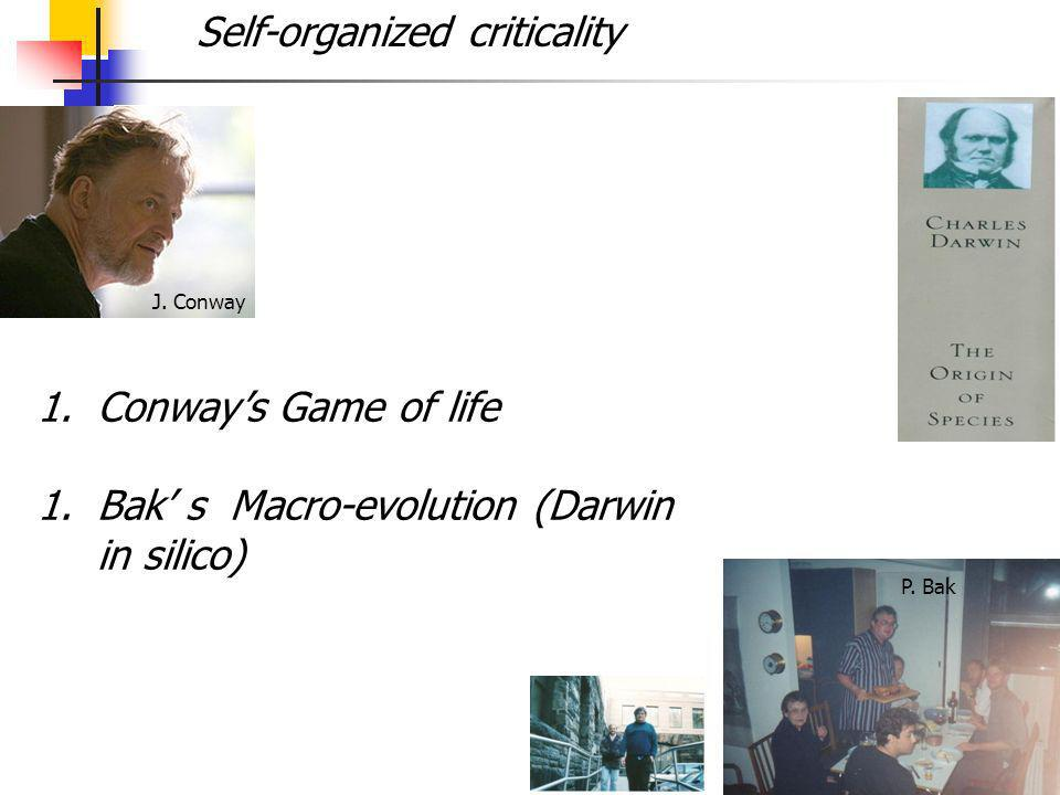 4 1.Conways Game of life 1.Bak s Macro-evolution (Darwin in silico) J.