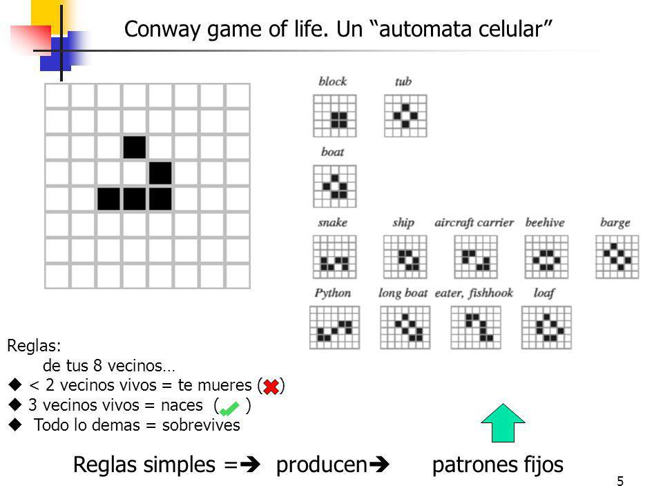 5 Conway game of life.