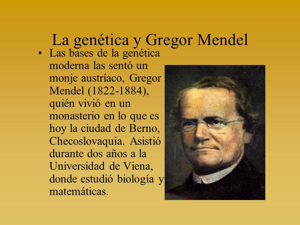 Las bases de la genética moderna las sentó un monje austríaco, Gregor Mendel (1822-1884), quién vivió en un monasterio en lo que es hoy la ciudad de B