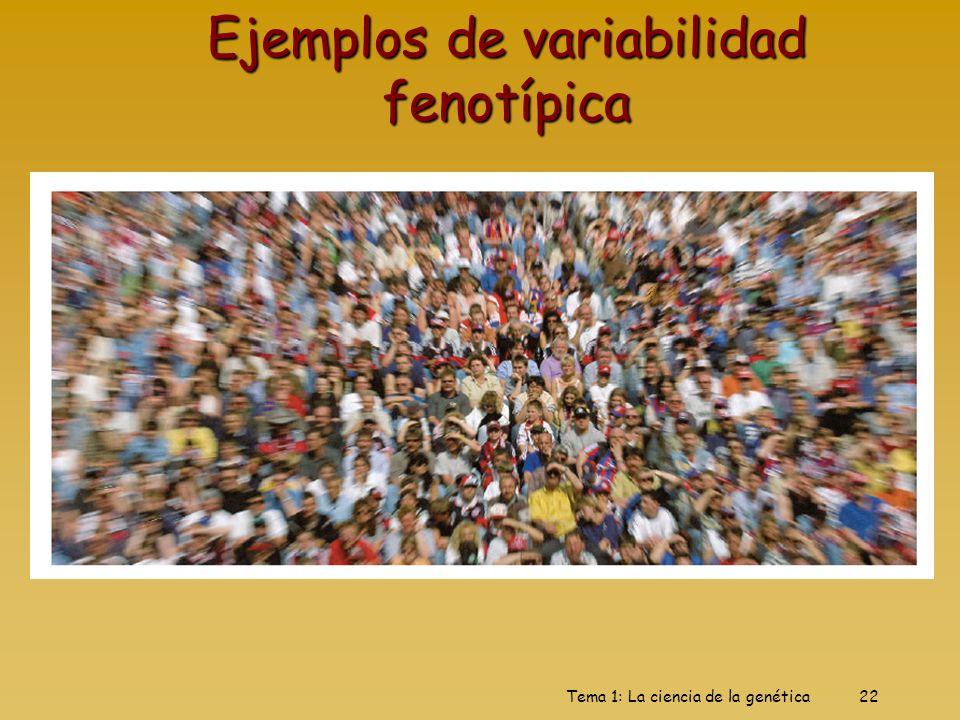 Tema 1: La ciencia de la genética22 Ejemplos de variabilidad fenotípica