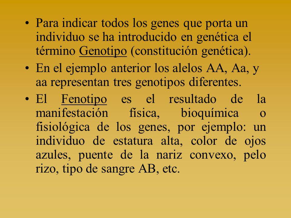 Para indicar todos los genes que porta un individuo se ha introducido en genética el término Genotipo (constitución genética). En el ejemplo anterior