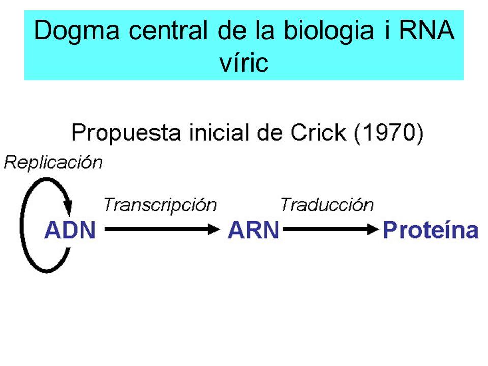 Dogma central de la biologia i RNA víric