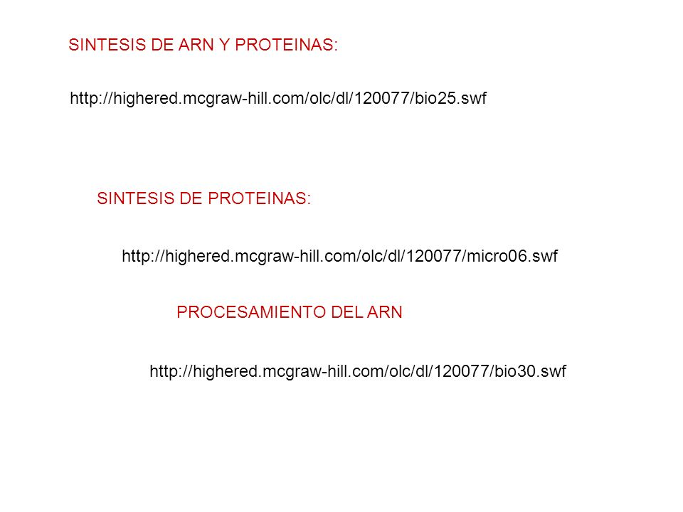 http://highered.mcgraw-hill.com/olc/dl/120077/bio25.swf SINTESIS DE ARN Y PROTEINAS: http://highered.mcgraw-hill.com/olc/dl/120077/micro06.swf SINTESI
