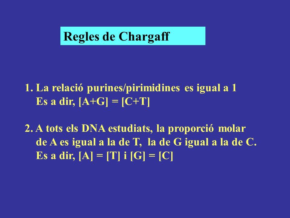 1. La relació purines/pirimidines es igual a 1 Es a dir, [A+G] = [C+T] 2. A tots els DNA estudiats, la proporció molar de A es igual a la de T, la de