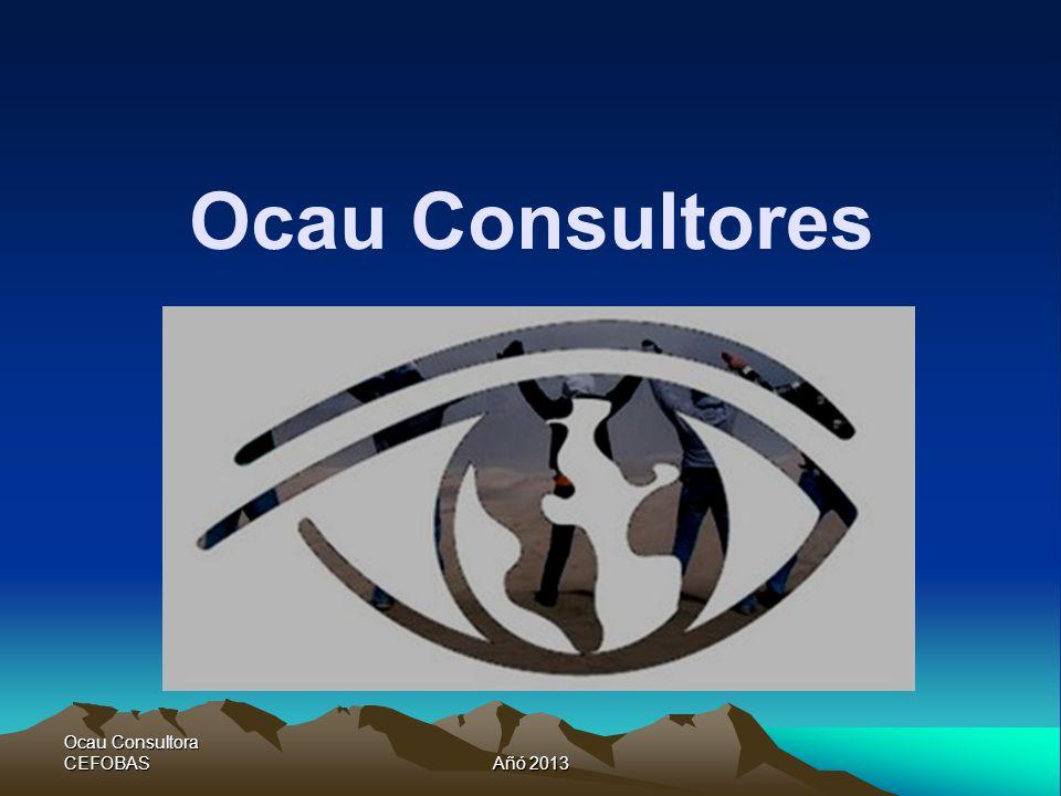 Ocau Consultora CEFOBASAñó 2013 Ocau Consultores