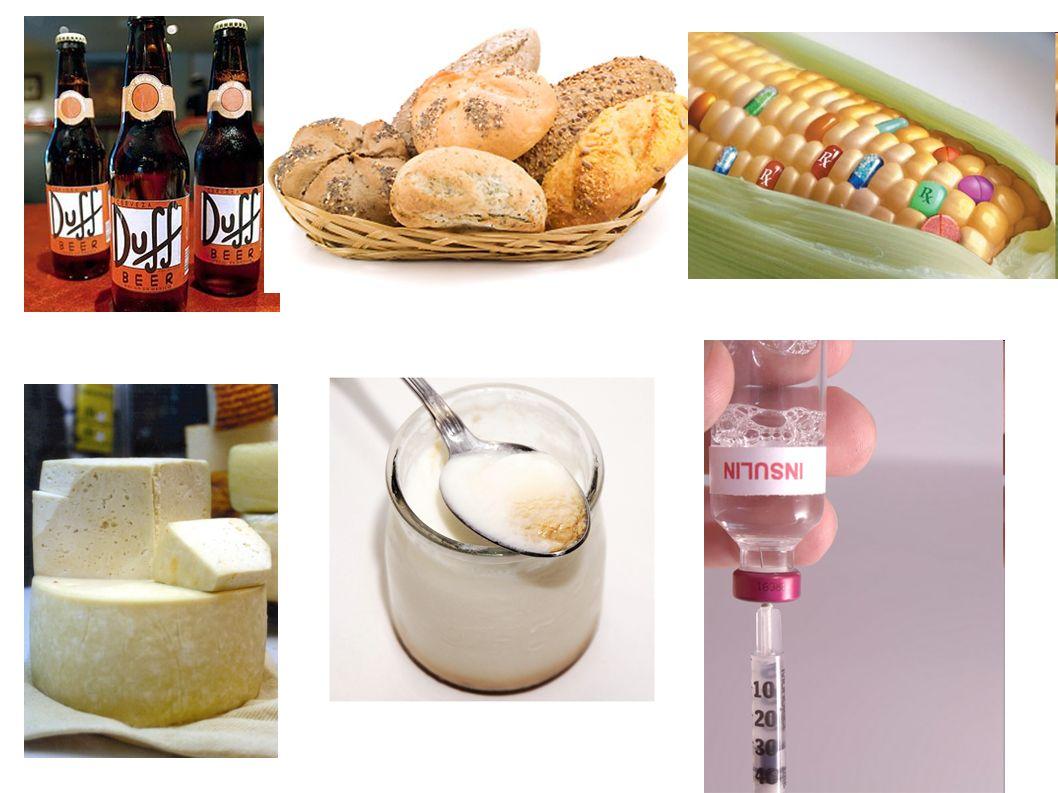 4) La terapia génica.
