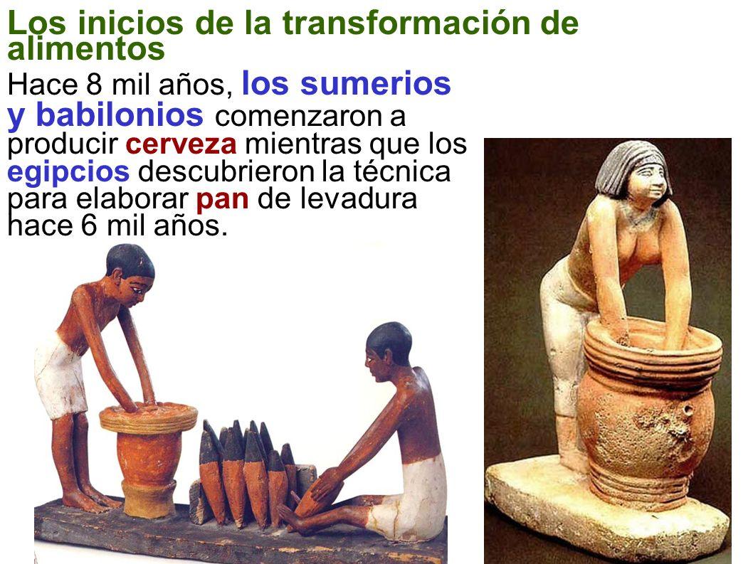 Los inicios de la transformación de alimentos Hace 8 mil años, los sumerios y babilonios comenzaron a producir cerveza mientras que los egipcios descu