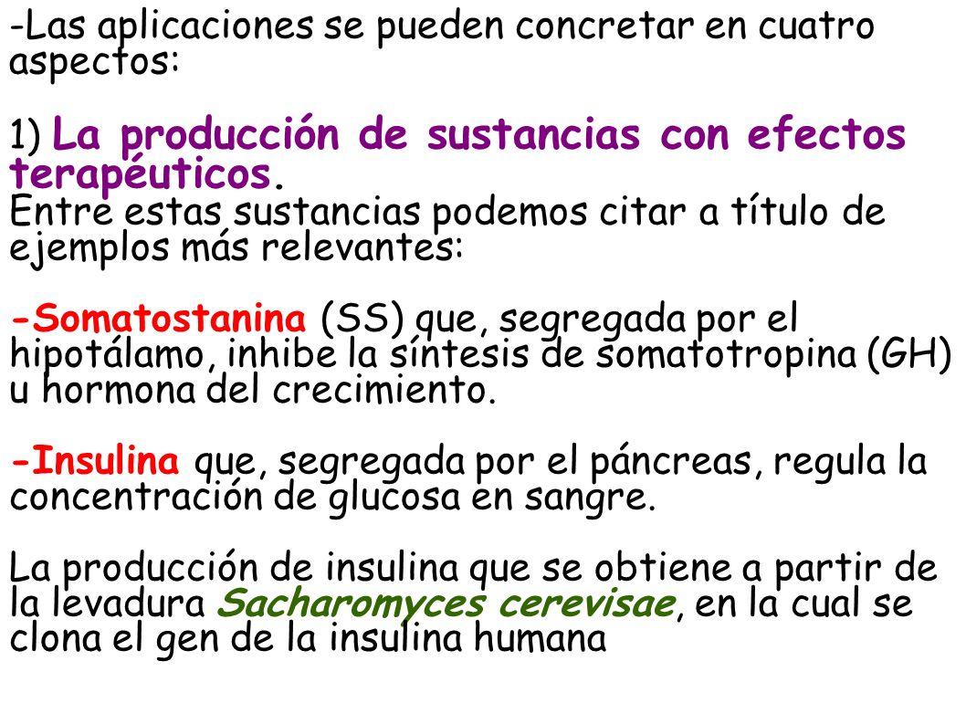 -Las aplicaciones se pueden concretar en cuatro aspectos: 1) La producción de sustancias con efectos terapéuticos. Entre estas sustancias podemos cita