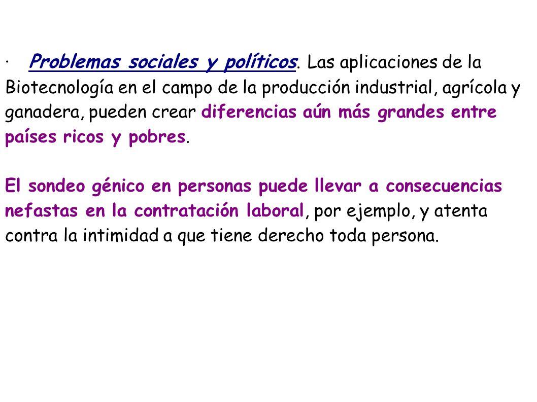 · Problemas sociales y políticos. Las aplicaciones de la Biotecnología en el campo de la producción industrial, agrícola y ganadera, pueden crear dife