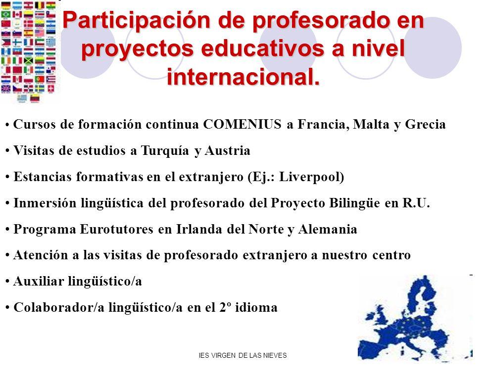 IES VIRGEN DE LAS NIEVES Participación de profesorado en proyectos educativos a nivel internacional. Cursos de formación continua COMENIUS a Francia,