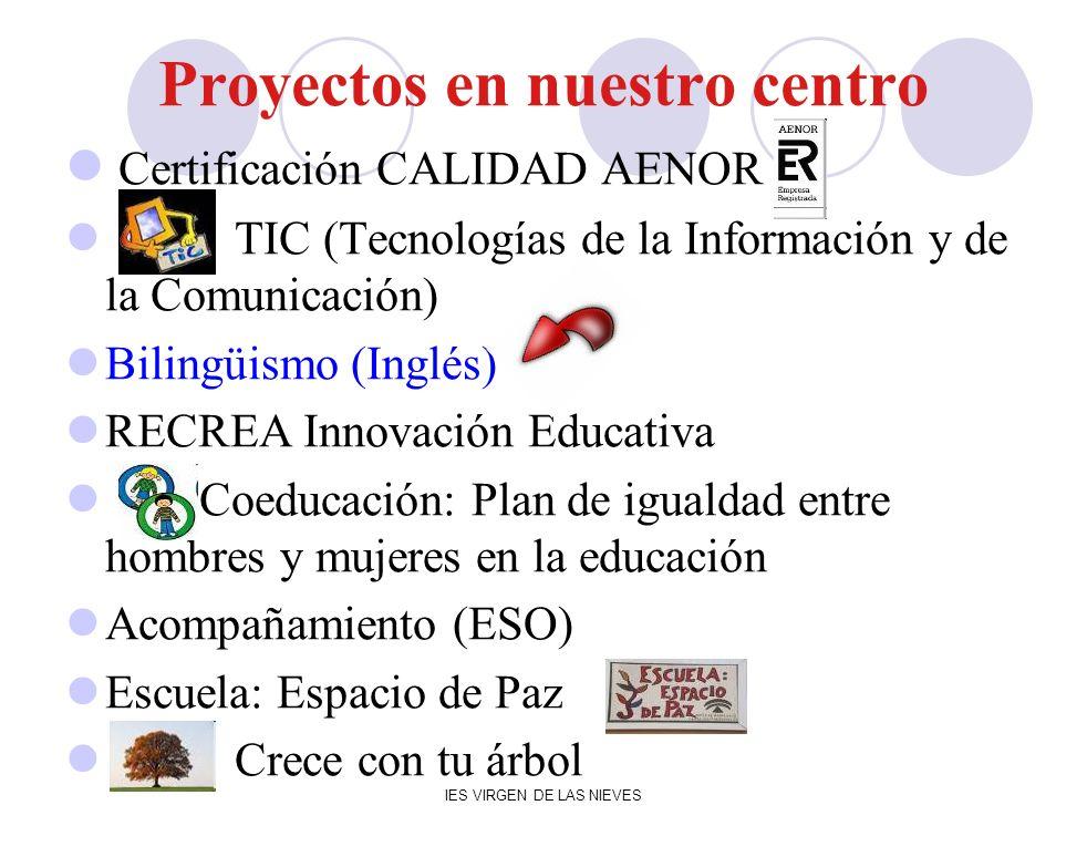 IES VIRGEN DE LAS NIEVES Proyectos en nuestro centro Certificación CALIDAD AENOR TIC (Tecnologías de la Información y de la Comunicación) Bilingüismo