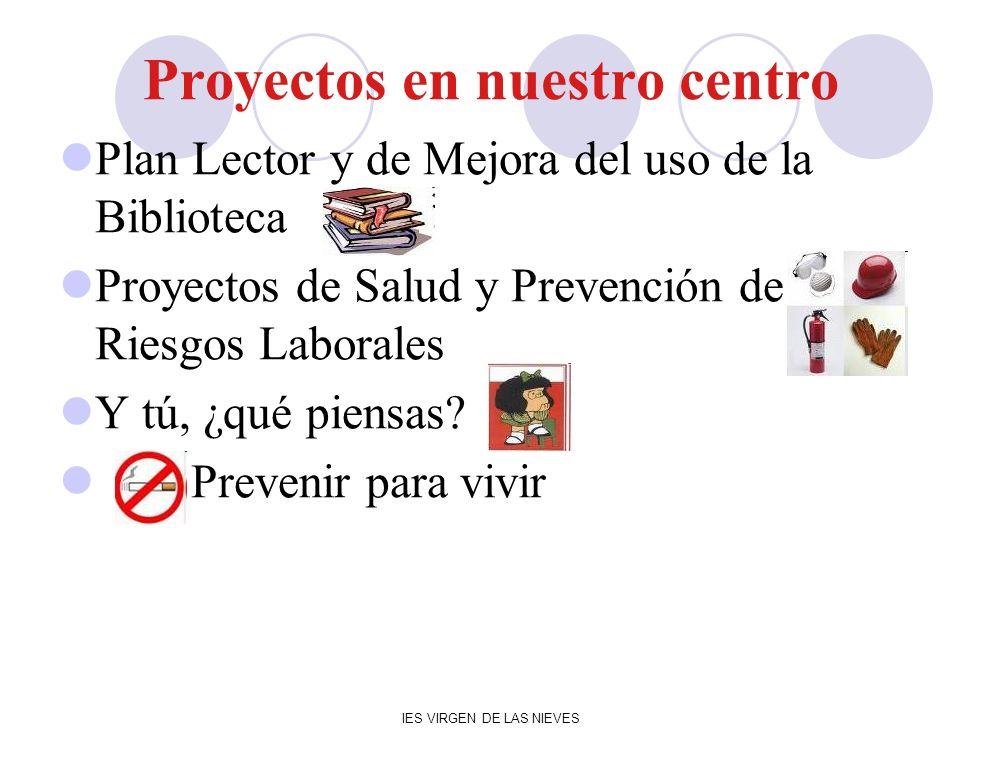 IES VIRGEN DE LAS NIEVES Proyectos en nuestro centro Plan Lector y de Mejora del uso de la Biblioteca Proyectos de Salud y Prevención de Riesgos Labor