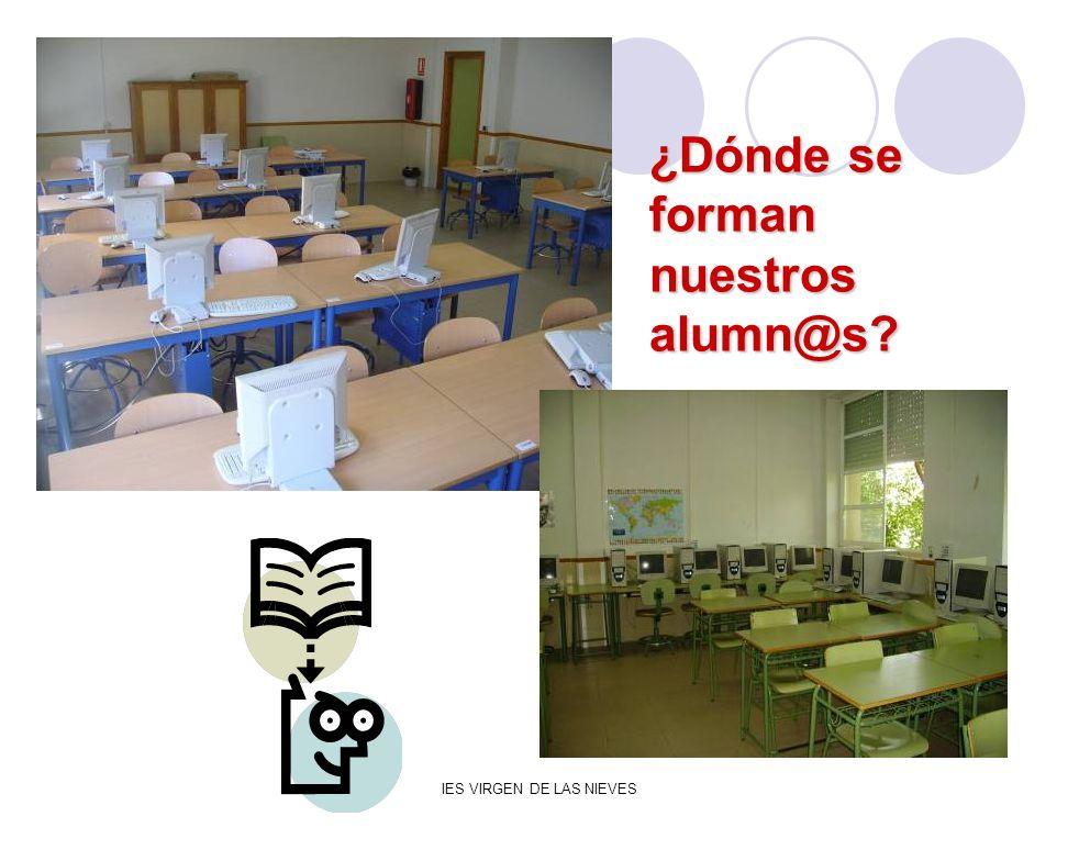 IES VIRGEN DE LAS NIEVES ¿Dónde se forman nuestros alumn@s?
