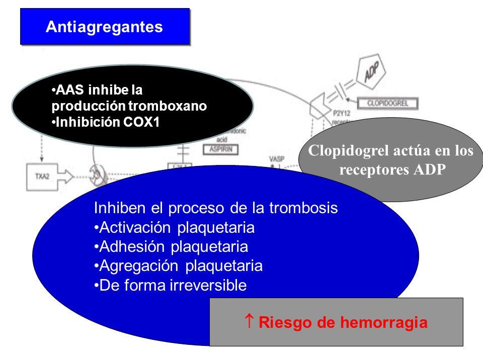 Antiagregantes Clopidogrel actúa en los receptores ADP Inhiben el proceso de la trombosis Activación plaquetaria Adhesión plaquetaria Agregación plaqu