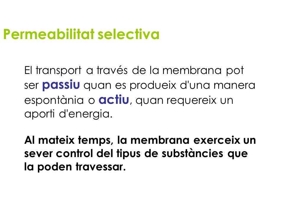Permeabilitat selectiva El transport a través de la membrana pot ser passiu quan es produeix d'una manera espontània o actiu, quan requereix un aporti