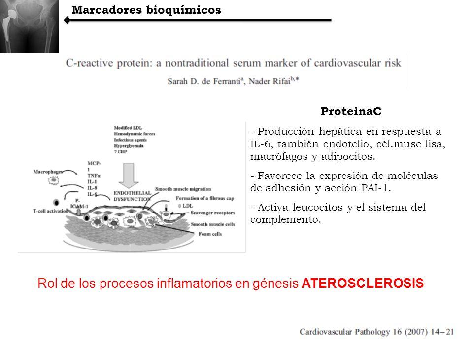Marcadores bioquímicos ProteinaC - Producción hepática en respuesta a IL-6, también endotelio, cél.musc lisa, macrófagos y adipocitos. - Favorece la e
