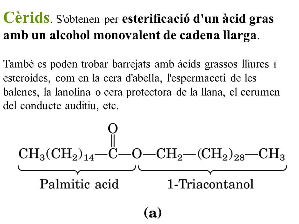 Cèrids. S'obtenen per esterificació d'un àcid gras amb un alcohol monovalent de cadena llarga. També es poden trobar barrejats amb àcids grassos lliur