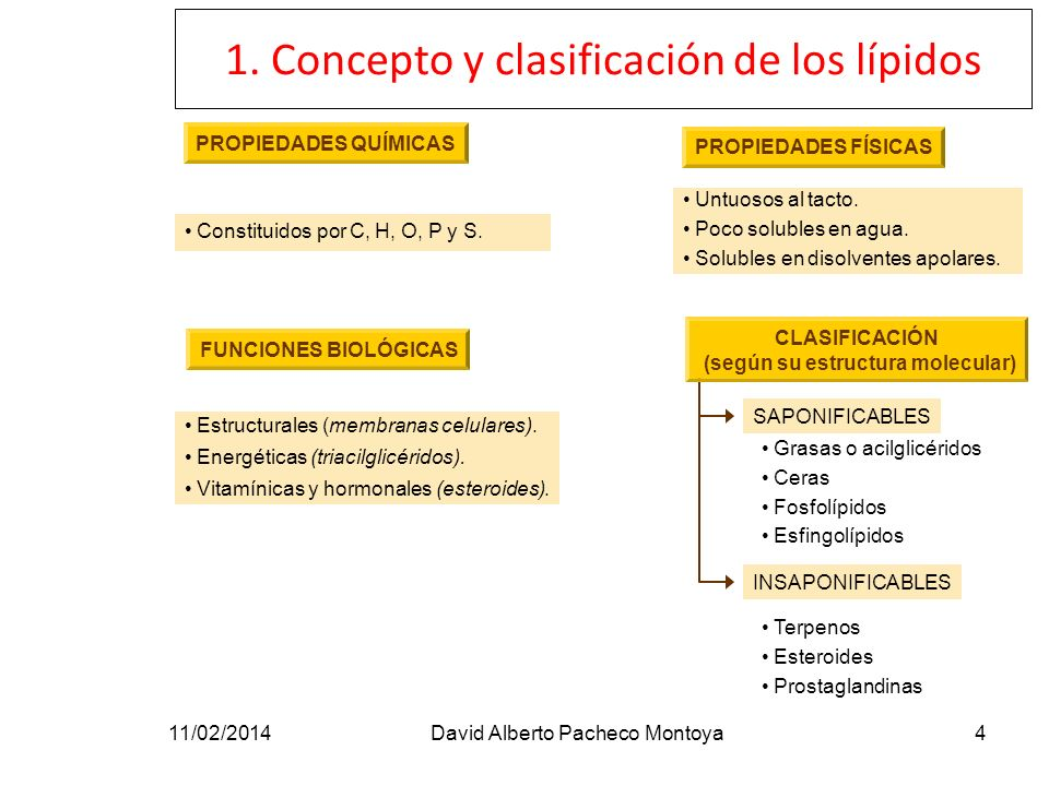 1. Concepto y clasificación de los lípidos 11/02/2014David Alberto Pacheco Montoya4 PROPIEDADES QUÍMICAS Constituidos por C, H, O, P y S. PROPIEDADES