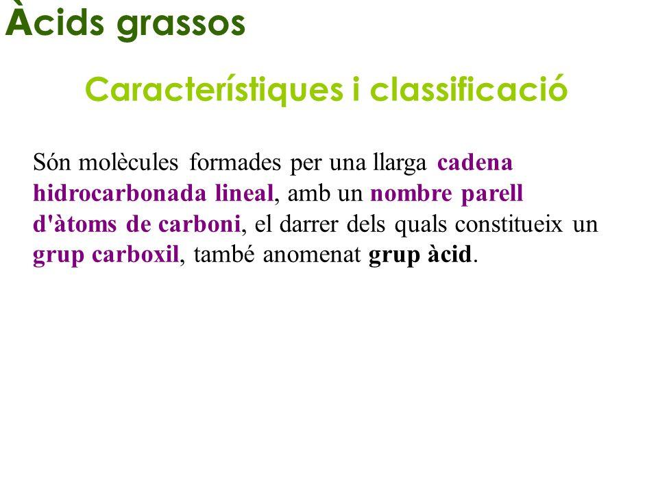ÀCIDS GRASOS SATURATS NomFórmula Punt de fusió (ºC) Mirístic CH 3 – (CH 2 ) 12 – COOH 53,9 Palmític CH 3 – (CH 2 ) 14 – COOH 63,1 Esteàric CH 3 – (CH 2 ) 16 – COOH 69,6 Lignocè ric CH 3 – (CH 2 ) 22 – COOH 86,0 INSATURATS NomFórmula Punt de fusió (ºC) Oleic CH 3 – (CH 2 ) 7 – CH = CH – (CH 2 ) 7 – COOH 13,4 Linoleic CH 3 – (CH 2 ) 4 – CH = CH – CH 2 – CH = CH – (CH 2 ) 7 – COOH - 5,0