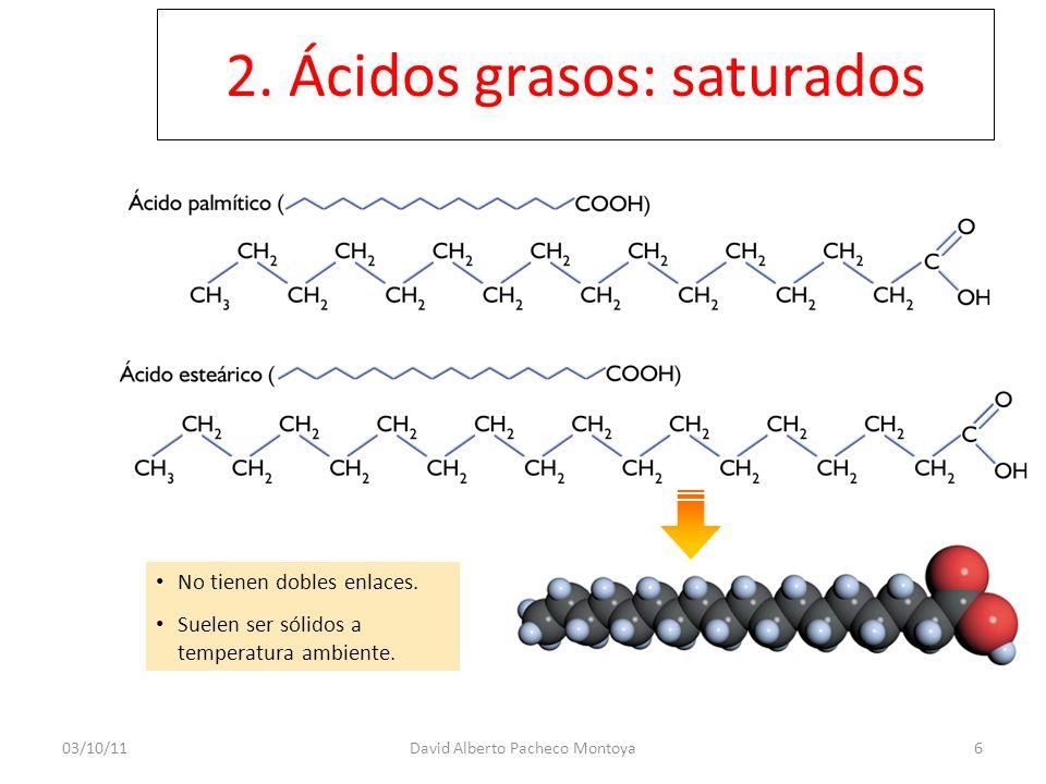 2. Ácidos grasos: saturados No tienen dobles enlaces. Suelen ser sólidos a temperatura ambiente. 6David Alberto Pacheco Montoya03/10/11