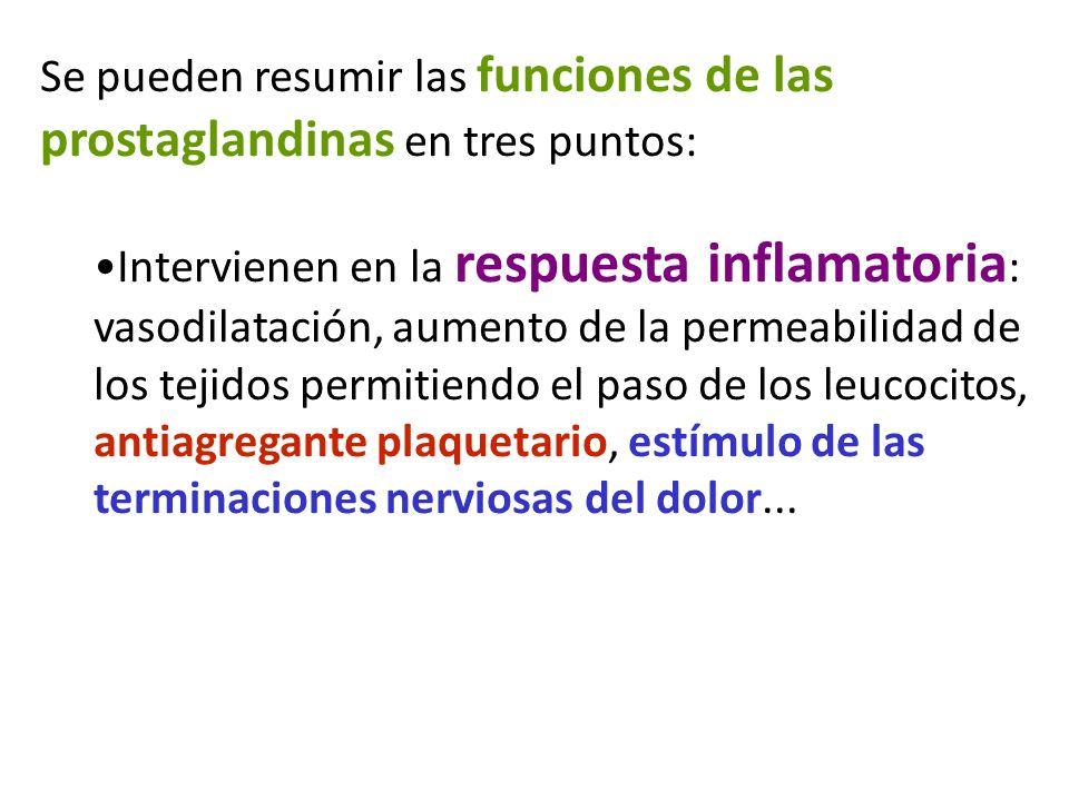 Se pueden resumir las funciones de las prostaglandinas en tres puntos: Intervienen en la respuesta inflamatoria : vasodilatación, aumento de la permea