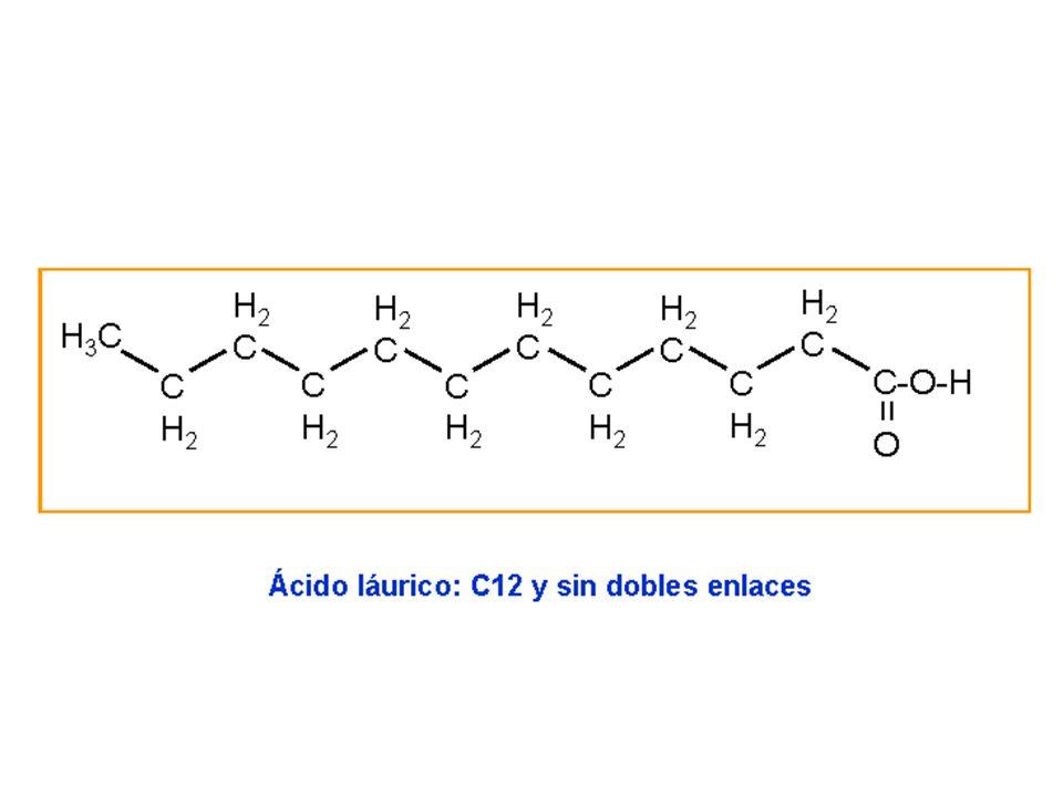 cerebròsid Monosacàrid: glucosa o galactosa