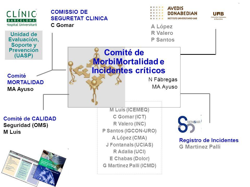 M Luis (ICEMEQ) C Gomar (ICT) R Valero (INC) P Santos (IGCON-URO) A López (CMA) J Fontanals (UCIAS) R Adalia (UCI) E Chabas (Dolor) G Martinez Palli (