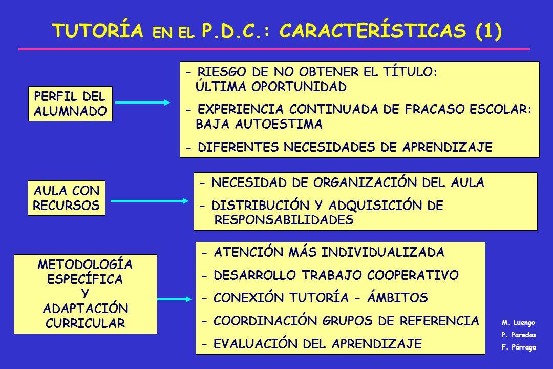 TUTORÍA EN EL P.D.C.: CARACTERÍSTICAS (1) PERFIL DEL ALUMNADO AULA CON RECURSOS METODOLOGÍA ESPECÍFICA Y ADAPTACIÓN CURRICULAR - RIESGO DE NO OBTENER
